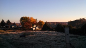 The Homestead, as seen from the hilltop pasture.  Maybe my favorite vantage point.